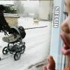Protégé: La vie en janvier